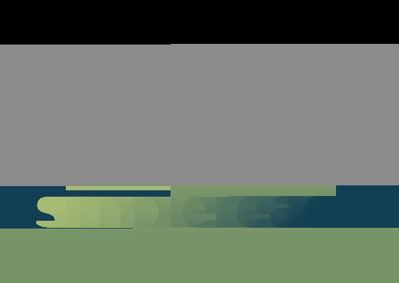 partner-logos-simpleareach